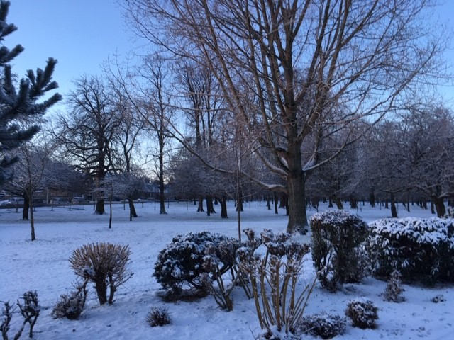 Picture on a snowy day in Elgin for our Snow Day Blog AM Employment Law Ltd Elgin Moray